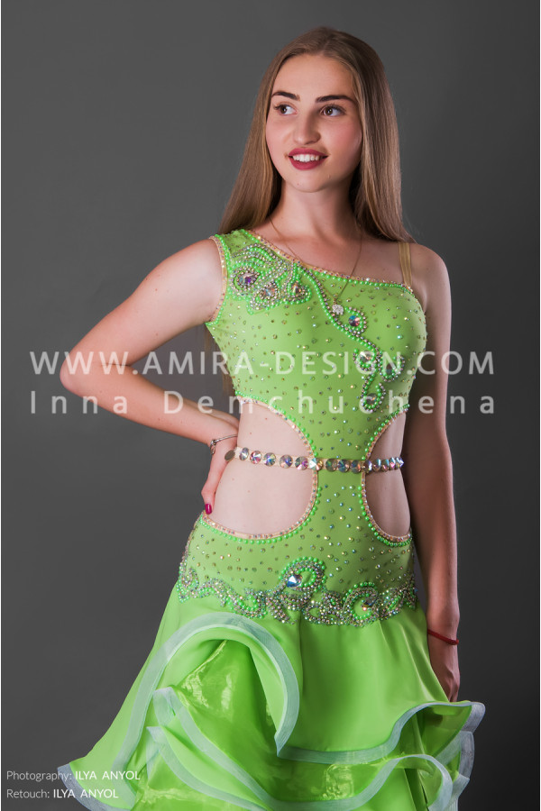 Professional bellydance costume (classic 113a-used)