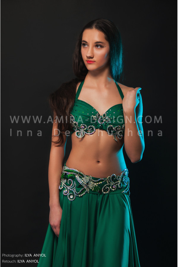 Professional bellydance costume (classic 133a)