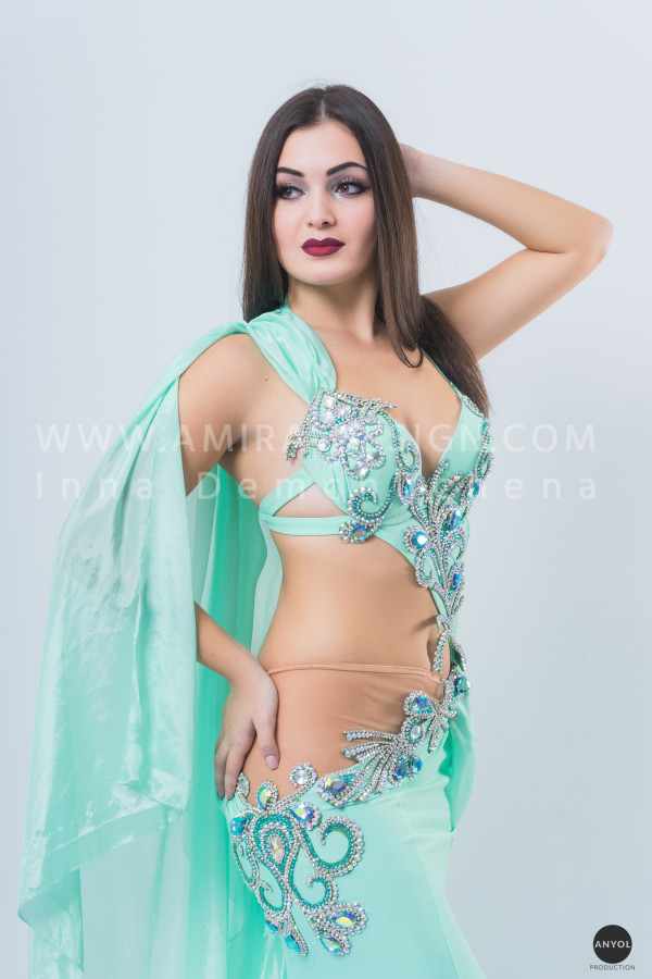 Professional bellydance costume (classic 141a)